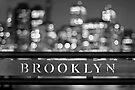Brooklyn by Evelina Kremsdorf