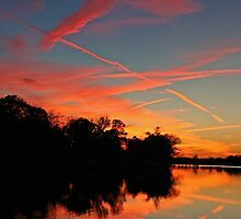 Contrails in the Sunset by Eileen McVey