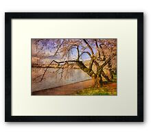 At The The Cherry Blossom Festival Framed Print
