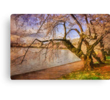At The The Cherry Blossom Festival Canvas Print