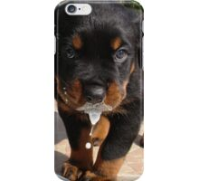 Cute Rottweiler Puppy Lapping Milk iPhone Case/Skin