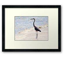 Standing Tall and Strong Framed Print
