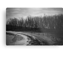 Wintertime Shoreline Metal Print