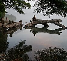 Serenity by fotovivencias