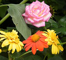 Monet's Garden Exhibit, Flower Close-Up, New York Botanical Garden, Bronx, New York by lenspiro