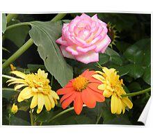Monet's Garden Exhibit, Flower Close-Up, New York Botanical Garden, Bronx, New York Poster
