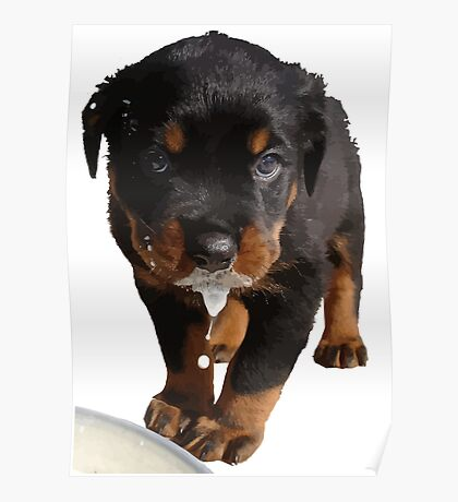 Cute Rottweiler Puppy Lapping Milk Vector Poster