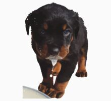 Cute Rottweiler Puppy Lapping Milk Vector Baby Tee