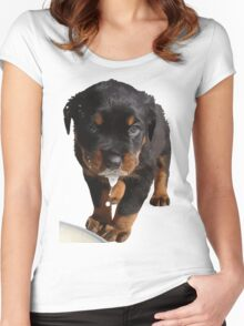 Cute Rottweiler Puppy Lapping Milk Vector Women's Fitted Scoop T-Shirt