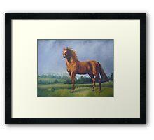 Man O'War Racehorse Framed Print