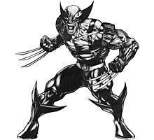 Wolverine 3 Photographic Print