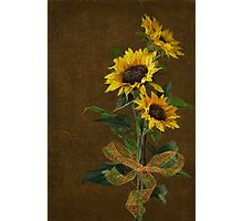 Sunflower Bouquet Photographic Print