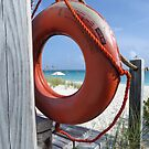 Looking through the lifebuoy. by Anne Scantlebury