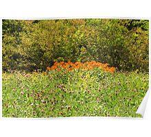 Wildflower Heaven Poster