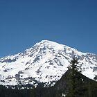 Mount Rainier, Washington USA by Kelly Walker