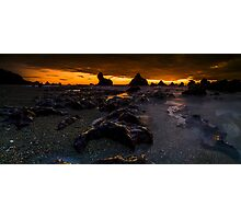 Seal Point Panoramic Photographic Print