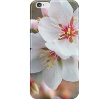 Blossoms 2 iPhone Case/Skin
