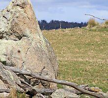 Granite boulder by Kelly Walker