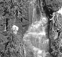 Waterfall on Mount Rainier in Black & White by Kelly Walker