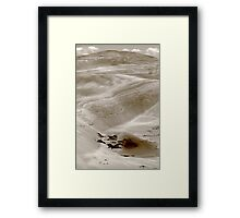 beautiful desolation... Framed Print