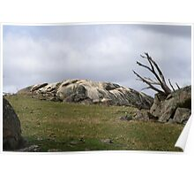Granite formation on a hill Poster