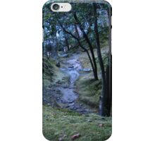 A Little Creek on a Mountain iPhone Case/Skin