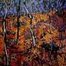 Barryrennie Forest Gulley by Richard  Tuvey