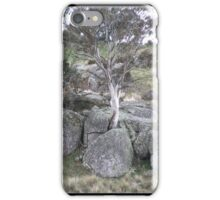 Lonely Gum tree iPhone Case/Skin