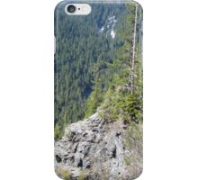 Lonely tree on Mount Rainier iPhone Case/Skin