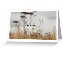 Airbus 320 in the air Greeting Card