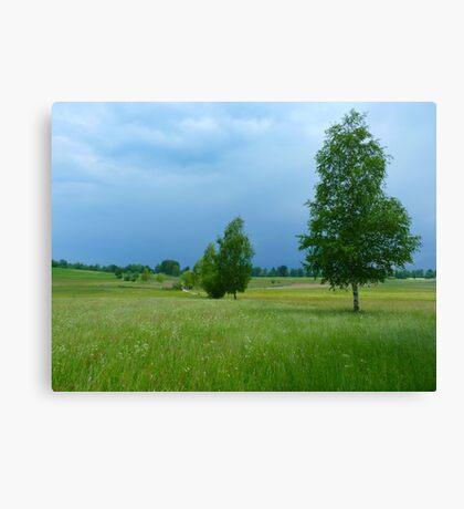 Landscape Trees Nature Gewitterstimmung Canvas Print
