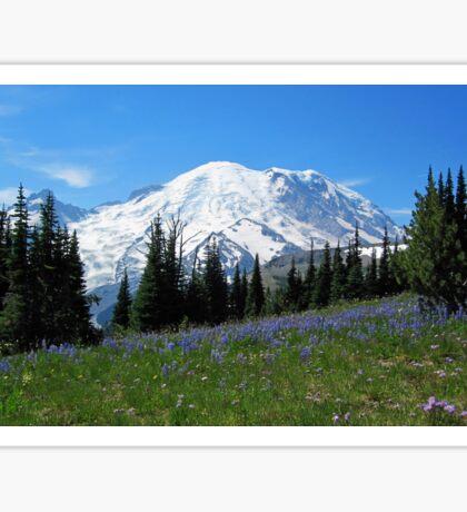 Mt. Rainier from Sunrise Sticker