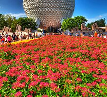 EPCOT by Ray Chiarello