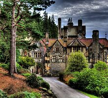 Cragside Northumberland #1 by Andrew Pounder