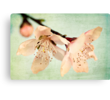When The Wind Blows Softly, The Blossoms Whisper Your Name Canvas Print