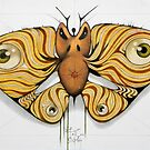 angry moth by federico cortese