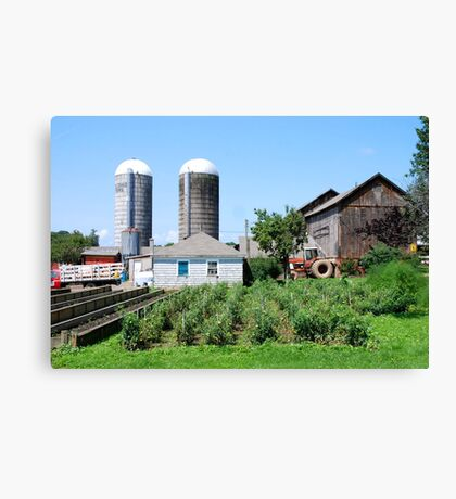 Working Farm in Suffield Canvas Print