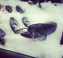 Fishing by Ashley Marie