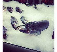 Fishing Photographic Print