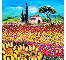FLORA IN TUSCANY/ Flower Fields ,Poppies and Sunflowers Photographic Print