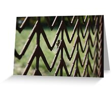 """"""" Insect Gateway Greeting Card"""