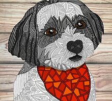 Max the Havanese by artlovepassion