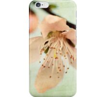 When The Wind Blows Softly, The Blossoms Whisper Your Name iPhone Case/Skin