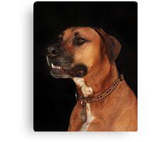 Rudy Portrait Canvas Print