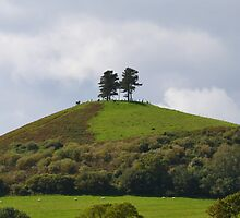 Colmers Hill ,Symondsbury, Dorset UK by lynn carter