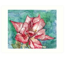 Wild Rose Watercolor Painting Art Print