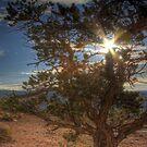 Capitol Reef National Park by IntWanderer