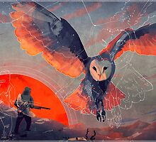 Owl Hunt by MicaelaDawn