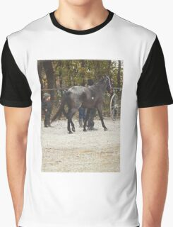 The New Horse Graphic T-Shirt