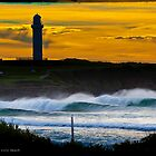 Wollongong Stacks by 16images